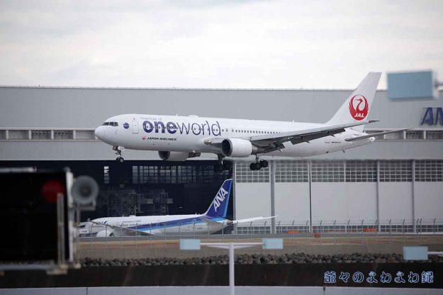 JAL oneworld  羽田空港
